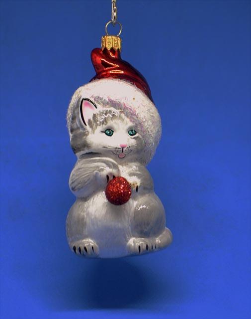 Katze  grau mit Weihnachtsmütze