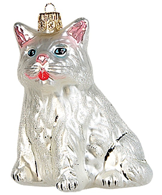 Katze Weiß sitzend