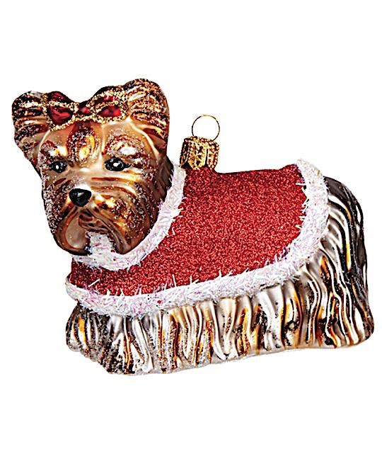 Yorkshire Terrier Hund weihnachtlich